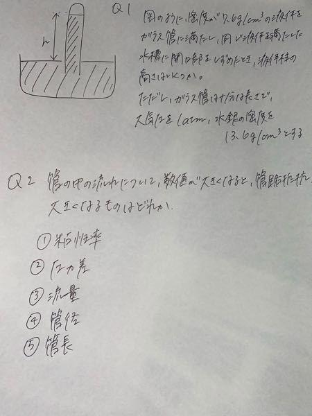 この物理の問題を2問解いて欲しいです