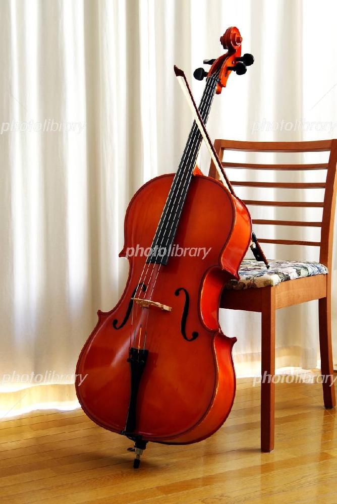 大好きなチェロ奏者といえば誰ですか? (^○^)♫