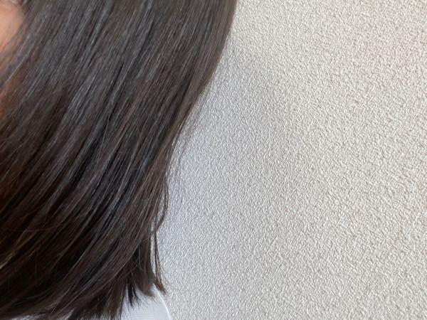 大至急です! 学校に髪下ろしていきたいのですが・・・ 切れ毛が結構多いかもです。 近くに寄った時とか結構見えます。 母が美容師なので、一度も美容室に行ったことがないです。 なので、一人で髪の毛のケアを頑張りました。 写真では、あまり見えませんが下さない方がいいと思いますか?