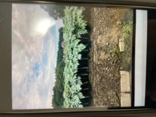 この写真の作物が、何か気になっています。 先日、群馬県沼田市周辺に行ったときに この植物の畑が広がっており、気になってしまいました。