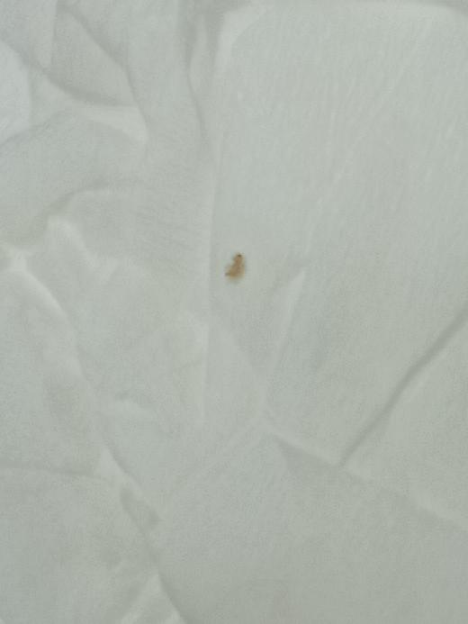 この虫はダニでしょうか…? よくホコリの溜まるところや教科とか山にして放置してた場合等によく付いてる(発生?)のですがなんでしょうか…また、体に害などはありますか? ※見にくくてすみません