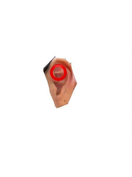 ピアスを赤の丸のところに開けたいです。 この場所は、ロックですか?ダイスのどちらですか?