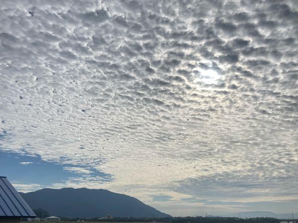 これは何雲ですか? 気持ち悪くてびっくりしました。