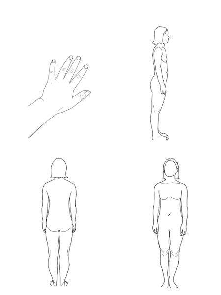骨格はどれだと思いますか? 似合う服とか、痩せやすい(にくい)ところなどを知りたいので参考にしたいです。