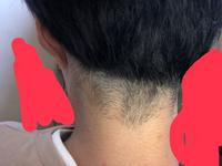 美容師さんに後ろをカットしてもらうとこのようになりました。僕的にはもう少し綺麗にできないのかなと思ったのですけがこれは僕のうなじらへんの髪の生え方がわるいのですかね?
