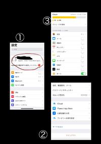 iPhone xs なんですが、プライベートリレーというボタンがどこにあるのか探せません。アップデートは終えたようです。