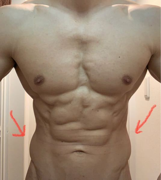 この人のように腹筋は割れていて体脂肪率もそこまで高くないように見えるのに横腹が浮き輪のようになるのはどうしてでしょうか。さらに体脂肪を落としていけば浮き輪はなくなっていきますか?それともダイエットでは 改善できない生まれ持ったウエストでこれ以上細くできないのでしょうか。サイドベントやツイストなど腹斜筋を鍛える運動で改善できるのか、それとも逆効果で筋肥大してしまいさらに太く見えてしまうのか。わたしも同じようにウエストが太く見えてしまうため何か改善方法があれば教えていただきたいです。