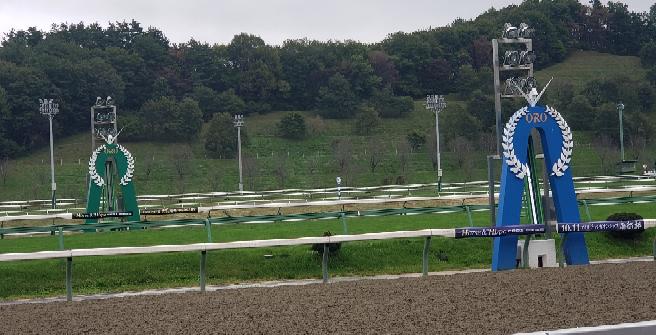 今の盛岡競馬場に移転して 初めての 芝コースのレースの第一号の勝ち馬と騎手は誰ですか?