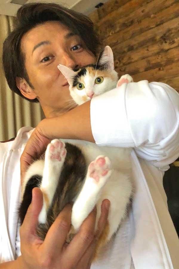 歌謡コーラスグループ・純烈の白川裕二郎さんの飼い猫の1匹・みたらしちゃんはかわいいですか?感想お願いします。
