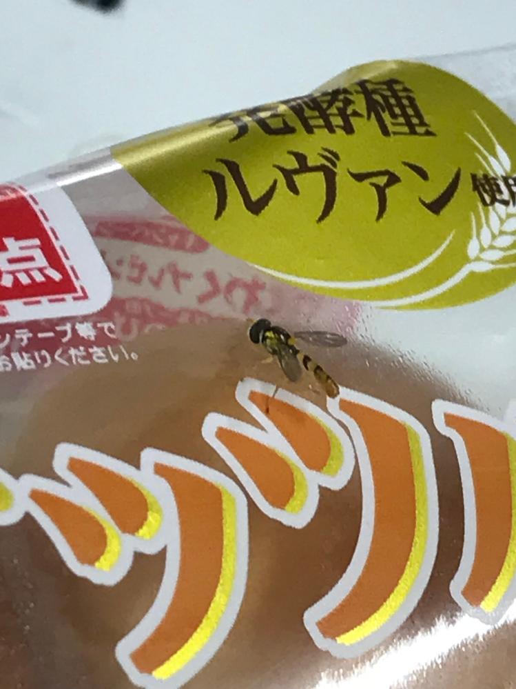 この虫の名前を教えていただけますでしょうか 初めて見た虫なので、ハチなのかアブなのか分かりません… よろしくお願いします。