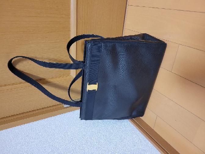 フェラガモのバッグについてです。 この前タンスの中を整頓してたら出てきました。 これはなんという品名ですか? ブランド物についてです無知ですのでよろしくお願いします