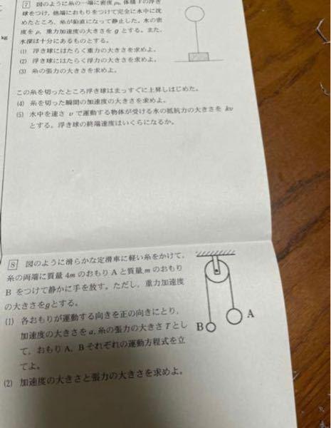 高一物理基礎の問題です。 こちらの大問7と8を教えてください! よろしくお願いしますm(_ _)m