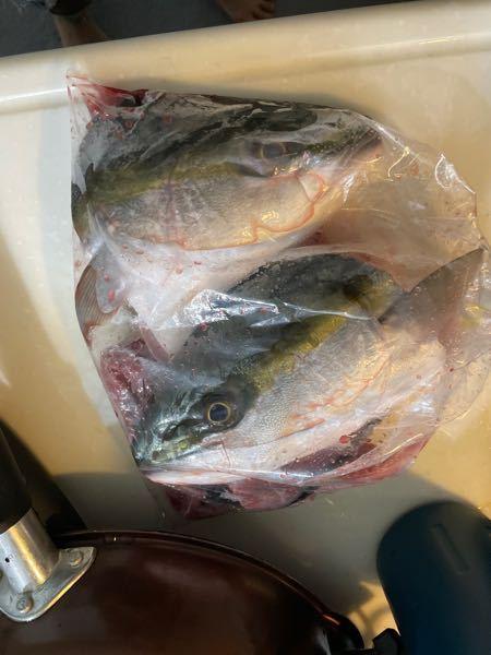 この魚はなんですか? どのような調理方法がおすすめですか
