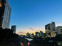 ここどこですか?東京都内だと思います。