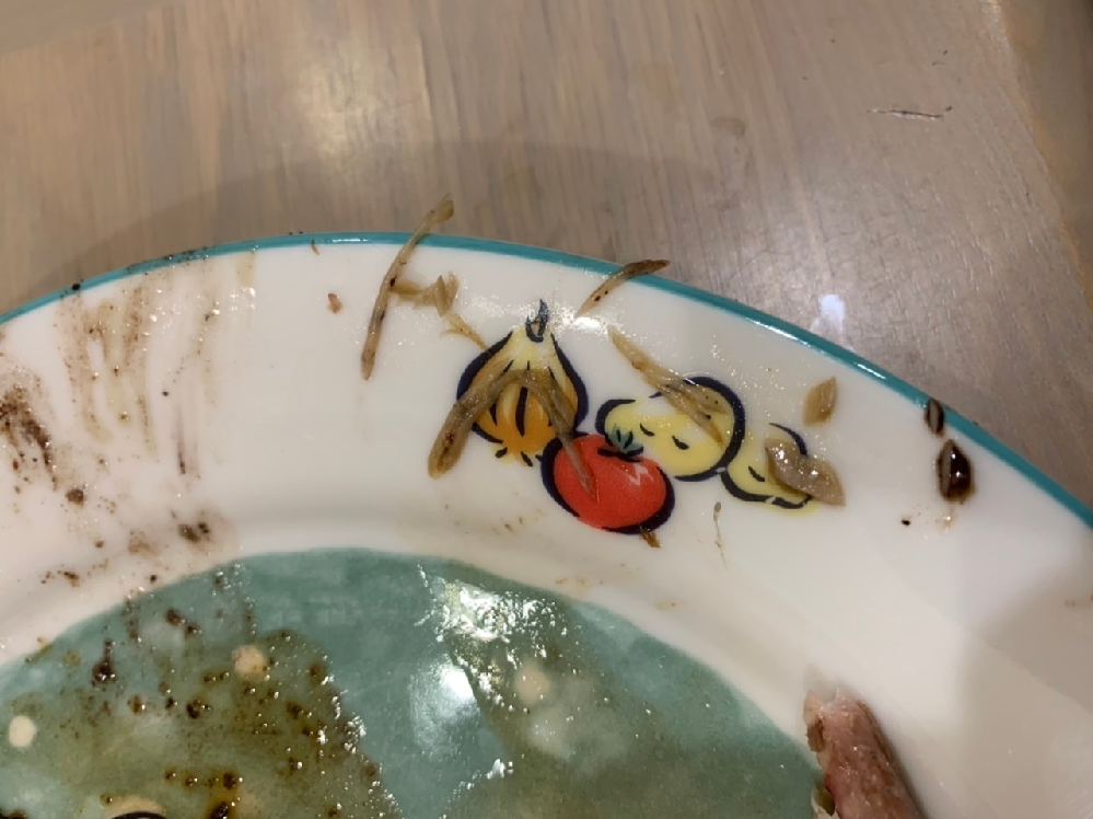 秋刀魚を焼いたら、線虫のようなものがたくさん出てきました。 これらはアニサキスですか?