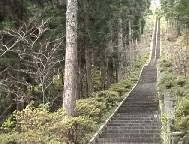 石割神社の階段は403段あるそうですが、私は日頃の有酸素運動として自宅の階段30段を50往復(上りのみで1500段)しているので、その階段程度は楽勝でしょうか?
