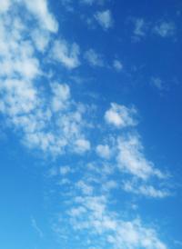 これは,うろこ雲でいいですか?
