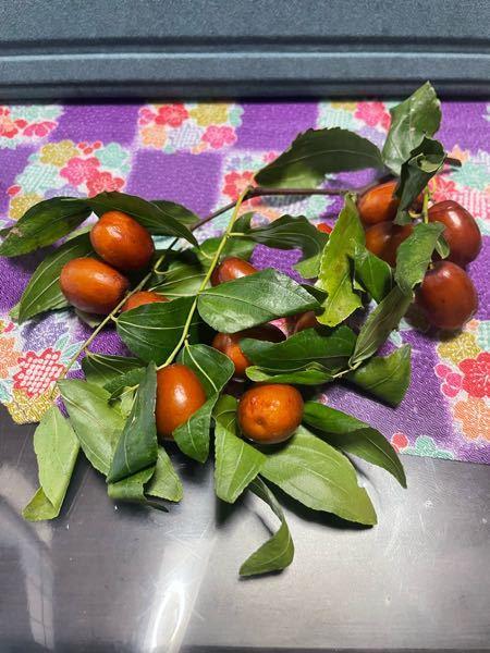この木の実は何ですか? 祖母が貰ってきたもので、食べれる?らしいです。