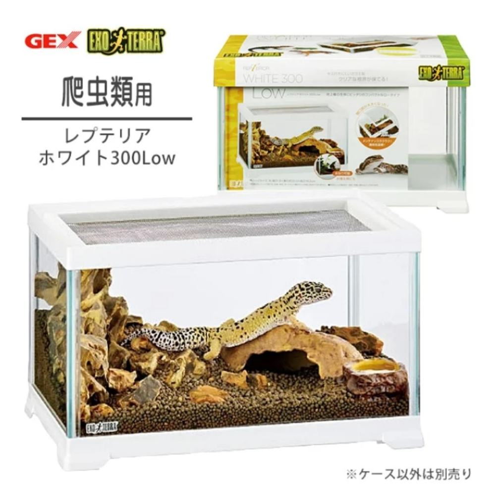添付写真のケージを持っているのですが、 高さの低いケージでも飼育できるカエルはいますか? また床材などレイアウトの仕方も教えて頂ければ幸いです。