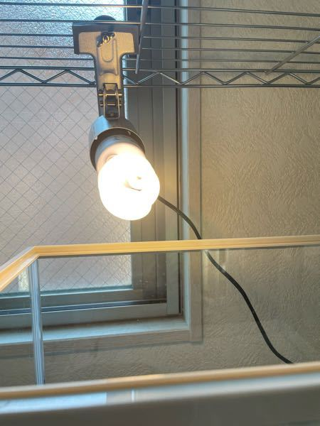 紫外線ライトの後ろに窓があるのですが、窓から入ってくる太陽で電球が割れたりしませんか?