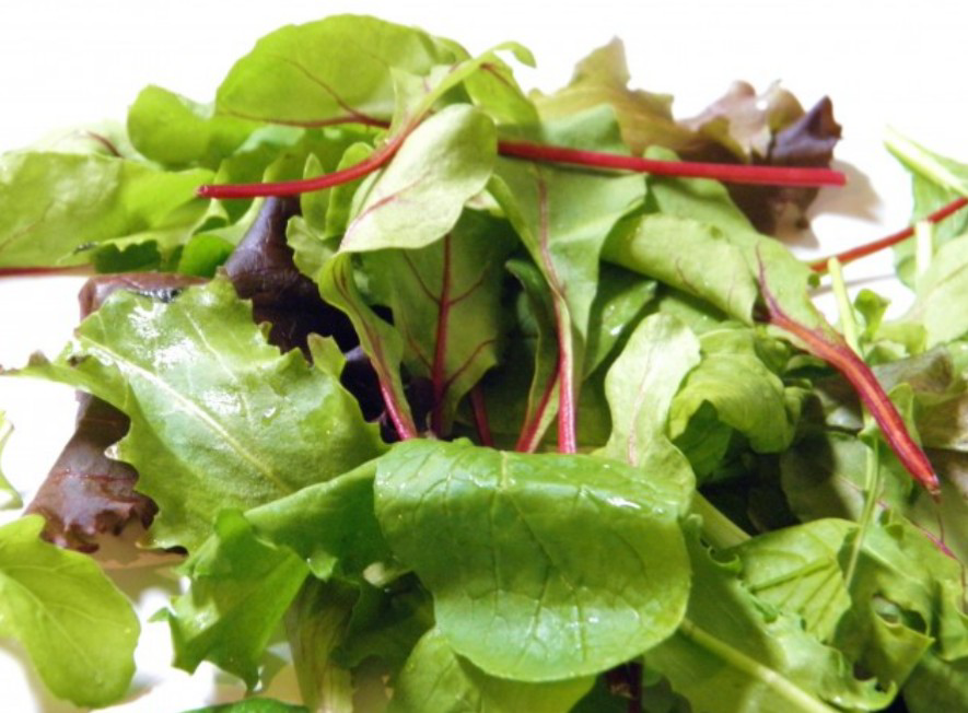 ベビーリーフのみでサラダを食べるなら、ドレッシングは何味が合うでしょうか?