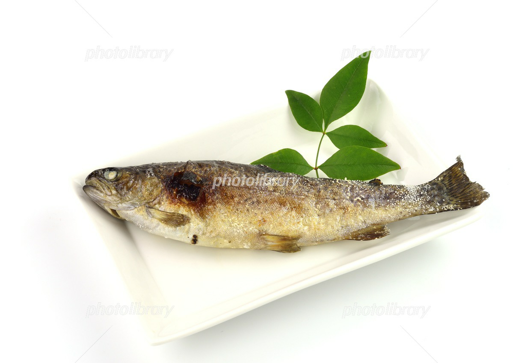 ニジマスの塩焼きは好きですか(^-^?)