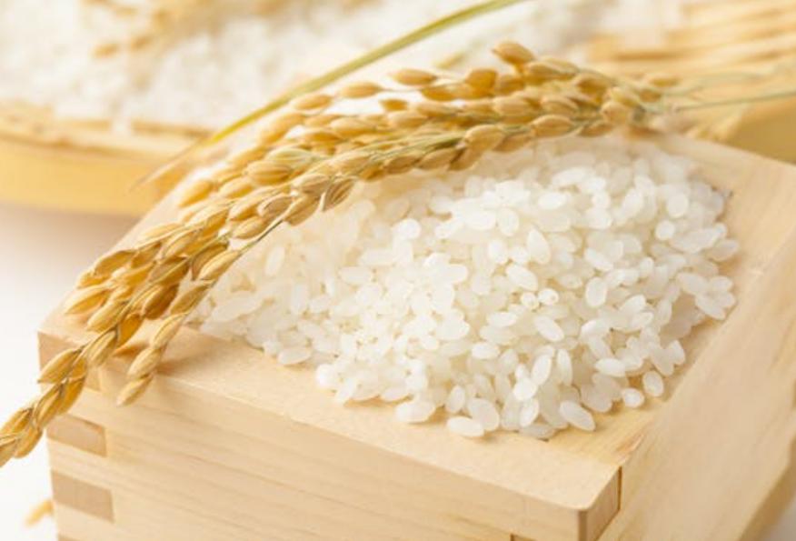 おはようございます(^o^)/ 皆さんが食べてるお米の銘柄は何ですか? お薦めあったら教えてください♪♪♪ ポッチャマは秋田こまちです。