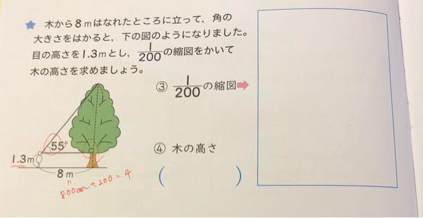 算数の宿題で、縮図の問題がでたのですが、縮図の書き方が分からないのでやり方を教えて欲しいです