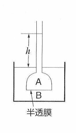浸透圧,グルコース,塩化ナトリウム,グルコース水溶液,塩化ナトリウム水溶液,モル濃度,NaCl水溶液