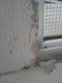 出窓の木枠の塗装 築30年のマンションに住んでおり、出窓の木枠の塗装がボロボロです。 ペンキがはげ落ちて、掃除も大変なので、なんとか自分できれいに直したいのですが、全くどうしていいかわかりません。 なにとぞご指導、よろしくお願いします。