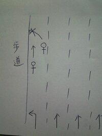 自転車事故の過失割合は? 自転車交通事故について相談いたします。  天候晴れ、見通しの良い片道4車線(左折専用と直進3レーン)の道路の左端をロード自転車(時速20km程)で走っていました。 すると直進レーン寄りを走っていた前の自転車(相手もロード、位置関係はこちらからして右前方約3メートル程)が後ろを確認することも無く突然歩道に上がるためハンドルを切ました。私はブレーキをかけましたが間...