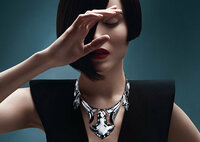 バカラのネックレスについて いったい、これは、いくらするものなんでしょうか?  YOSHIKIにプレゼントしたいです!