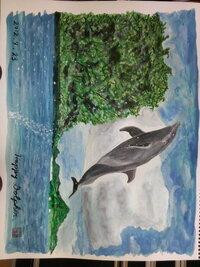 絵の感想・評価をお願いします。あるイルカの写真集の表紙を見て描いた水彩画です。