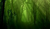 深い森を連想するような曲を教えてください。  洋楽、邦楽、ジャンルは問いません。  自由な感じで、よろしくお願いします。