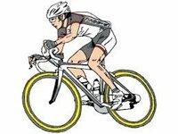 自転車保険は加入すべき?迷っています。皆さんは加入していますか?