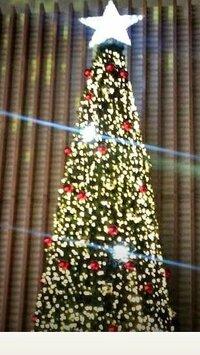 このクリスマスツリーはどこのイルミネーションか分かる方いらっしゃいますか? 分かる方がいましたら教えていただきたいです。 よろしくお願いします。