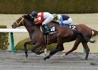 3月9日阪神10R仁川ステークス、ずばり勝ち馬は?
