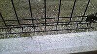 フェンス土台のコンクリートのひび割れ 写真のようにフェンスの土台部分に一定の間隔でヒビが入っています  モルタルを使用したとのことです 業者やメーカーは大丈夫と言うのですが・・・  これって普通ですか?
