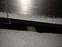 トヨタホームのエスパシオの新築9か月でネズミがでました。入居3か月ぐらいから一回の玄関口での異臭にきずき、わからないまま経過していました。 まさか新築でネズミがでるとは予想もつかず、1年点検のHEMSの初...