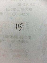 脛骨の脛という字ですが、解剖の教科書には「月+又+土」という漢字が使われていたりします。 どちらも同じ意味ですよね? 正字は脛ってことで良いですか?