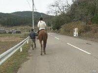馬は降りて手綱をひいて歩く場合も軽車両だと思うんですが? 乗馬クラブや行政書士まで「歩行者扱い」と解釈しています。 http://horse-para.com/09.html  http://www.miyako-office.net/blog/%E9%A6%AC%E3%82%84%E7%89%9B%E3%81%8C%E9%81%93%E8%B7%AF%E3%82%92%E8%B5%B...