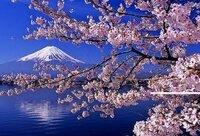 春の俳句・短歌を詠んでください!