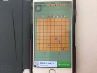 アプリの5手詰めです。ギブアップしました。将棋の強い方、お願いします。持駒は飛車、銀です。