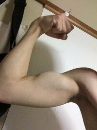 この筋肉のつき方はいい方ですか? 腕細いですよね? ちなみに左は画像より力こぶないです バイトで重いもの運んでます