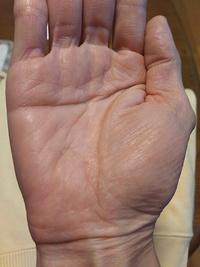 手相占いお願い致します。 46歳女です。普段の掌の色は大体こんな感じの肌色です。赤くはないです。A型です。 手相からどんな運勢かわかれば知りたいです。 適職などもお願いします。