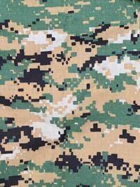 海兵隊のウッドランドマーパットっぽい、迷彩についてです。 先日クソ程安いマーパットを購入しましたが(ACUの形をしたアレです)迷彩の色合いが所持している実物のマーパットと少し違うのです。少し白部分の割合...