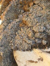 植物を植える為に掘っていると砂が沢山出て来ました。造成地ですが、山を10m程切り取って盛り土はしていない土地です。海水だと植物に悪いと思うのですが、これは川砂か山砂でしょうか?
