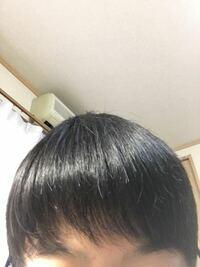この髪型ダサいですか?高校生です いい髪型ありませんか 髪の毛の量は少なくて細いです