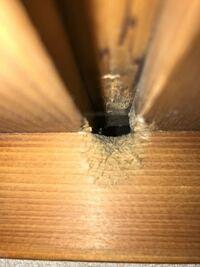 天井板のつなぎ目に何かの出入り口のようなものがあります これは何かわかる方いらっしゃいますか?  天井には結構シミ等があるので もしたら何か害虫がいるのかと思うんですが ネズミにしては穴が小さすぎるので何かわかる方教えてください  よろしくお願いします
