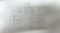 遺伝についての質問です。  以下の図で示される家系図についての問題がどうしても解けません。 どなたか教えてください。よろしくお願いします。 問題 ある転写因子をコードする遺伝子Xの疾病モデルマウスの...
